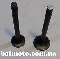 Клапана ГРМ 4Т 80 (SEE)