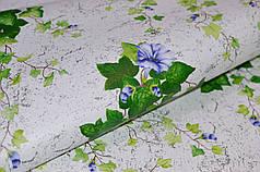Обои, влагостойкие бумажные, зеленый, светлый, Шарм Плющ 09-04, 0,53*10м