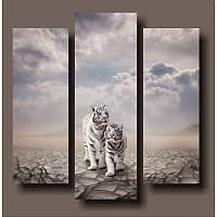 """Модульная картина """"Белые тигры""""  (600х600 мм) [3 модуля]"""