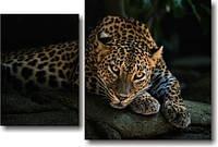 "Модульная картина ""Леопард""  (500х750 мм) [2 модуля]"