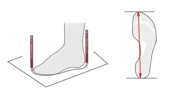 Как правильно измерить длину стопы. Размерная сетка обуви ТМ Bona Mente