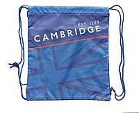 "553615 Сумка для обуви YES SB-01 ""Cambridge blue"""