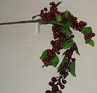Ветка большая  ягод глода темно-красных