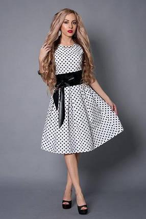 Платье мод 386-13 размер  44,46,48,50 белое в черный горох, фото 2