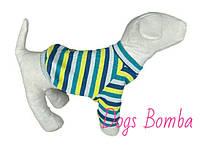Свитер Синий в полоску для собак DogsBomba
