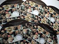 Обучающий диск -Комби маникюр и идеальное покрытие гель-лаком