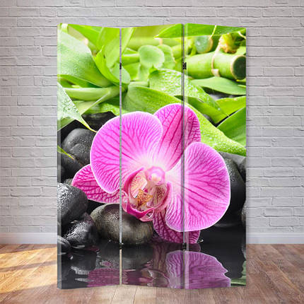 """Ширма """"Орхидея на камне"""", фото 2"""