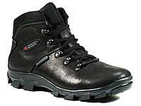 Ботинки зимние черные мужские на меху кожаные молния, фото 1