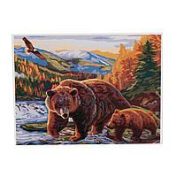 "Картина ""Бурые медведи"" по номерам, 01682"
