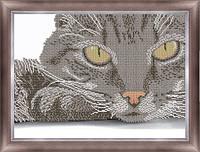 Кіт ЧК-А3-144 Габардин