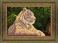 Тигр ЧК-А3-20 Габардин