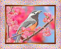 Весняний птах ЧК-А4-42 Габардин