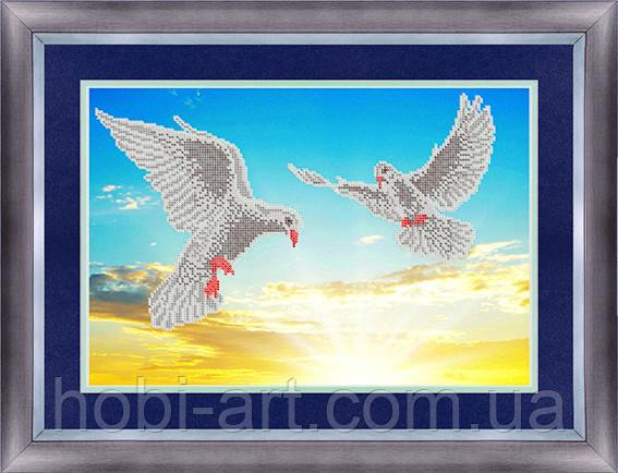 Голуби ЧК-А3-181 Атлас