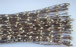 Прутики кремові 40см (коричнева основа)