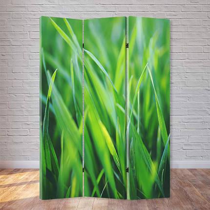 """Ширма """"Свежая трава"""", фото 2"""