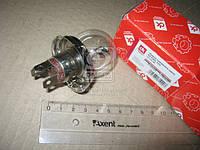 Лампа головного света R2 P45t 12V 45/45W