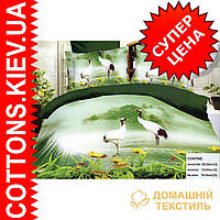 Комплект двуспального (евро) постельного белья 3D (коробка, 2 наволочки) Журавли