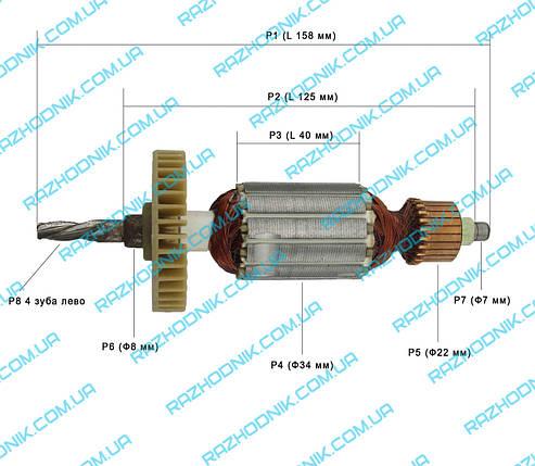 Якір на Дриль Титан ПДУ 710 РЕ, фото 2