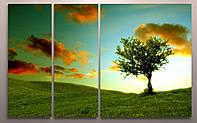 Модульная картина печать на холсте Природа Пейзаж Дерево на холме 100х60 из 3х частей