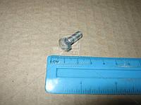 Болт М6х16 картера масл. ВАЗ, брызговиков КамАЗ (покупн. КАМАЗ)