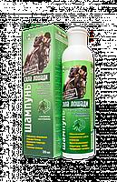 Шампунь для крашеных волос и мелированных волос Сила лошади 250 мл
