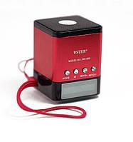 Портативная mp3 колонка Wster WS-695, дисплей, USB, встроенный акамулятор, радио, разные цвета