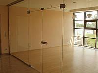 Входная группа с двойными дверьми, цельностеклянные конструкции, маятниковые двери