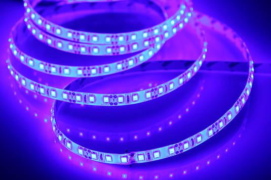 Светодиодная лента 3528-60 IP65 синий