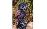Макет филина для борьбы с птицами, фото 1