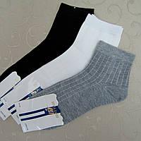 """Носки мужские укороченные """"Шугуан"""", 40-44 размер. Качественные носки для мужчин, хлопок"""