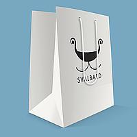 Бумажный пакет с логотипом из картона 240х200х80