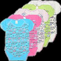 Детский боди-футболка с принтом, тонкий хлопок (стрейч-кулир), ТМ МС, р. 56 Украина