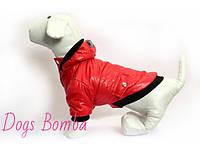 Куртка Ромбик красная для собак DogsBomba