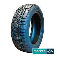 Зимние шины Saetta Winter (205/55R16 91H)