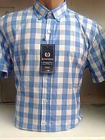 Рубашка мужская короткий рукав опт