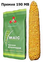 Премия 190 МВ (ФАО 190) Раннеспелый зерновой гибрид для Лесостепи и Полесья