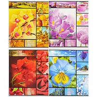 """Тетрадь цветная 48 листов,клетка """"Разноцветные цветы"""""""