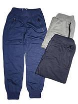 Штаны спортивные для мальчиков, F&D, размеры 8-16, арт. WX-2225