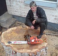 Удаление деревьев Киев.0675012805  Спил деревьев Киев