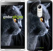 """Чохол на Lenovo K6 Красивий кіт """"3038c-452"""""""