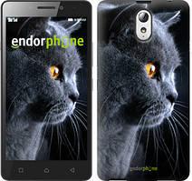 "Чохол на Lenovo K6 Note Красивий кіт ""3038c-453"""
