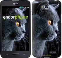 """Чохол на LG K5 X220 Красивий кіт """"3038c-457"""""""