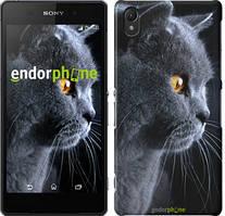 """Чехол на Sony Xperia E5 Красивый кот """"3038c-458"""""""