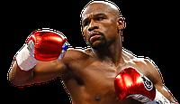 Что нужно для начинающего Боксера, чтобы стать чемпионом?