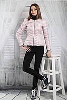 Женская куртка Bebless  44