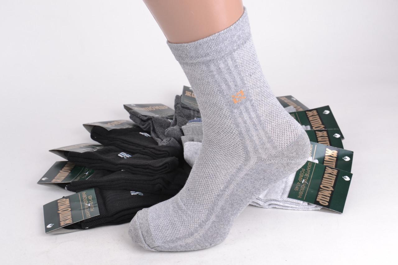 Мужские носки сетка ЖИТОМИР р. 41-45(Aрт. PT0198)