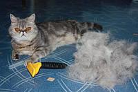 Выбираем фурминатор для кошки – обзор моделей и цен