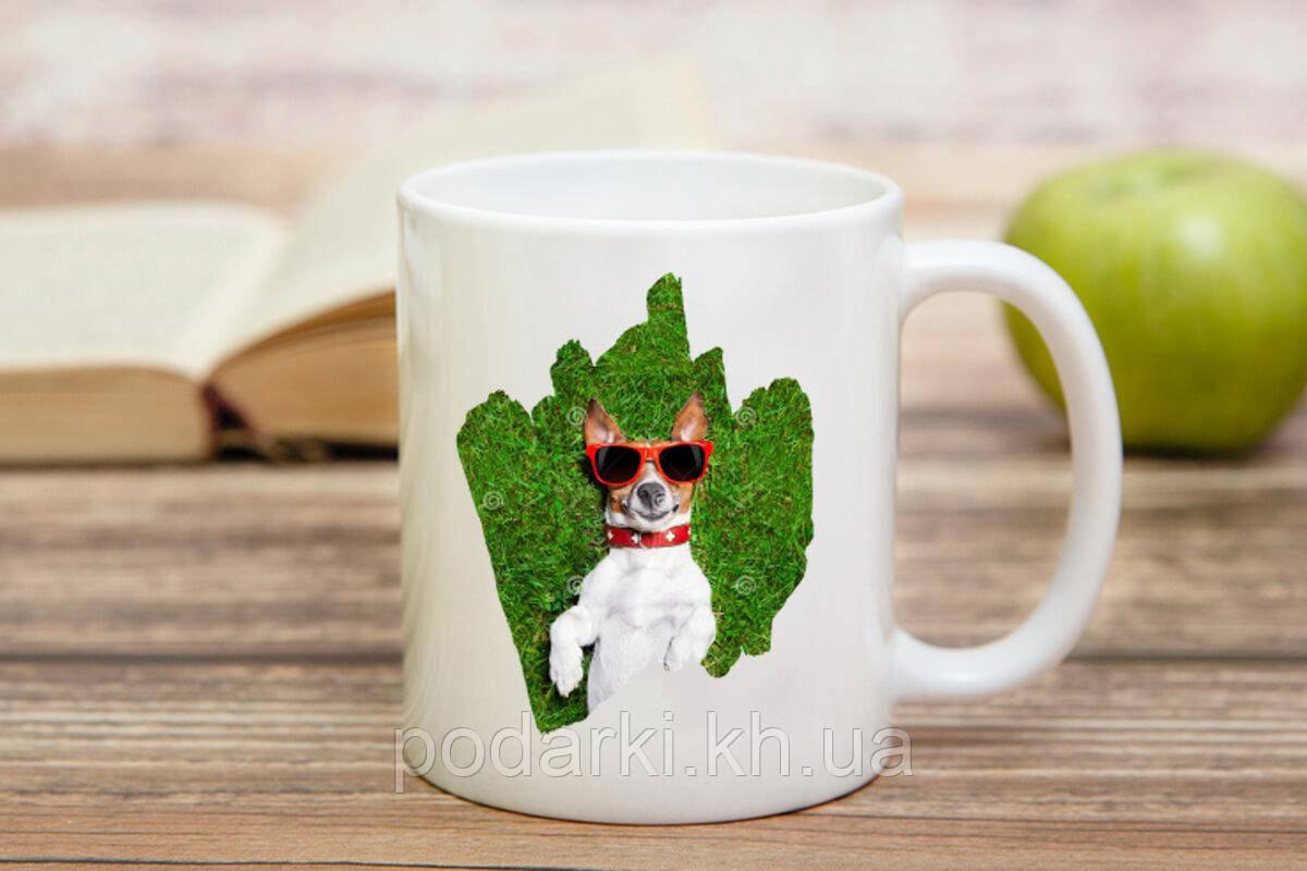 Чашка с фотографией любимого питомца
