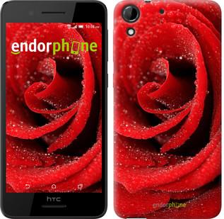 """Чехол на HTC Desire 630 Красная роза """"529c-454"""""""
