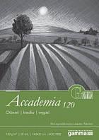 А1201421К50  Склейка для рисования Gamma Accademia 14,8х21см 50лист 120гр/м2, проклейка